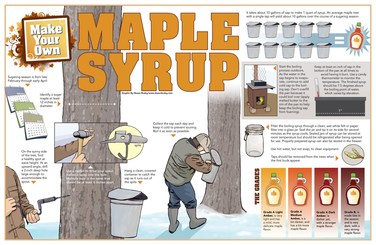 Image result for boiling maple syrup temp