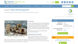 What Will Biodegrade?
