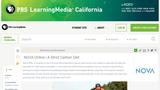 A Strict Carbon Diet