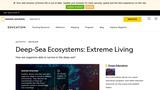 Deep Sea Ecosystems: Extreme Living