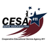 CESA 11 ITL Resource Work Group